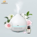 Remax CHAN series aroma diffuser RT-A810