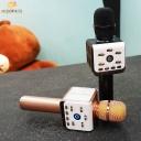 Microphone speaker ZP10 ZP11 H8